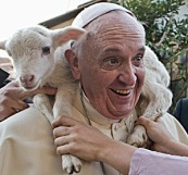 pope-francis-holding-sheep-shoulders