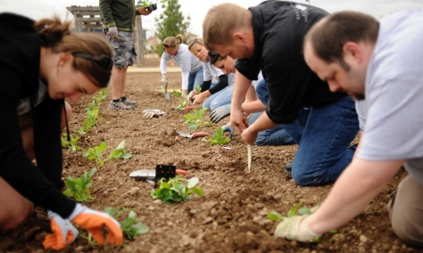 "GARDENS30-- Volunteers work on getting the Victory Garden, in Fort Collins, ready for this summer.Fort Collins is one of several communities developing Depression and World War II-era ""Victory Gardens,"" where people can grow their own food in these tough"